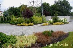 Ogród zmyślony - strona 189 - Forum ogrodnicze - Ogrodowisko