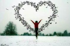 Coração e felicidade