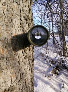 Just line up the crosshairs to see the cache location. P.S. Don't worry, we asked. The tree this is attached to was already dead.