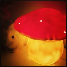 Mushroom lamp <3 I'm going crazy with all these cute forest themed stuff <3 lol