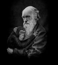 """""""Common Descent"""" by Michael Bancroft Happy Darwin Day! Charles Darwin would have been 207 years old today. Charles Darwin, Clothes Encounters, Poster Prints, Art Prints, Posters, Best Artist, Cool Artwork, Cool T Shirts, Graphic Tees"""