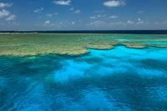 Image result for fishing sea