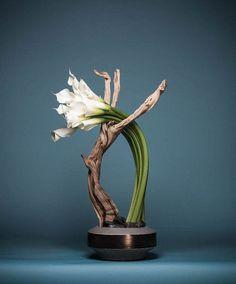 Stunning Unique Small Vase Designs To Refresh Your Room – Ikebana Arrangements, Ikebana Flower Arrangement, Flower Arrangement Designs, Unique Flower Arrangements, Flower Designs, Flower Vase Design, Floral Design, Arte Floral, Deco Floral