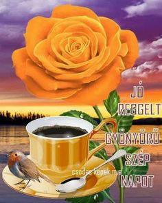 Osztva Flower Aesthetic, Coffee Break, Good Morning, Cooking Recipes, Rose, Flowers, Plants, Figurative, Pictures