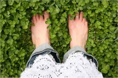 Stay barefoot my friends! Walking #barefoot not only fells good, but is also beneficial to our bodies. The best way to experience #earthing is to walk barefoot. Get out there and feel the grass in between your toes! www.pluggz.com