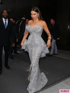 Sofia Vergara  Marchesa Gown  smouldering Silver,  Met Gala May 7 2012