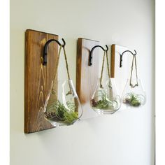 Hanging Terrarium Glass Wall Decor Hanging Plant Holder Kitchen Wall... ($52) ❤ liked on Polyvore featuring home, home decor, floral decor, grey, home & living, home décor, wall décor, wall hangings, shabby chic home accessories and glass terrarium