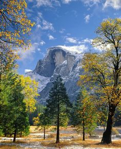 As fall fades and winter comes it makes for some beautiful photos. Pictured here is #Yosemite #NationalParks iconic #HalfDome peeking through the trees in the valley. Photo of @yosemitenps courtesy of Ed Cooper (@ed_cooper_photography). #California by usinterior