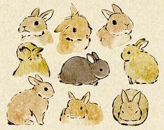 bunny sketches . . . . ღTrish W ~ http://www.pinterest.com/trishw/ . . . . #art #journal