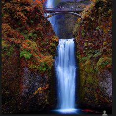 Mulomoth falls Oregon