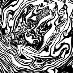Black and white pattern. Modern abstract art. Cabbage print.