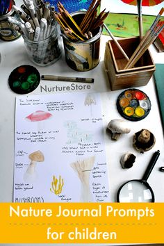 nature journal prompts for children, nature study activities,
