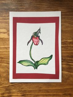 Pitcher Plant Greeting Card Original Watercolour Painting