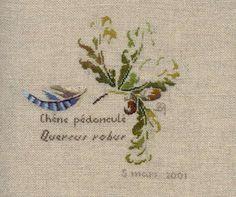 Le geai des chênes - Le fourre-tout de Marie-Thérèse Saint-Aubin