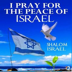 Pray For Israel! Psalm 122: Pray for the peace of Jerusalem: they shall prosper that love thee. 7 Peace be within thy walls, and prosperity within thy palaces. 8 For my brethren and companions' sakes, I will now say, Peace be within thee.