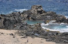 Natural Pool in Aruba. Actually four wheeling up to the place was just as or more fun than swimming with those big black crabs that live in the pool.