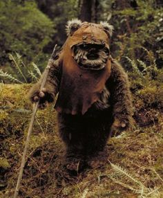 ewoks:  wicket.  loved these guys (er, animals?  things??) when i was little.