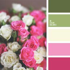 color rosa frambuesa, color tallo verde, color verde oliva suave, de color verde lechuga, elección del color, frambuesa, Olga Kravtsova, oliva, púrpura rosado, rosado suave, rosado y verde, tonos rosados, tonos verdes, verde suave.