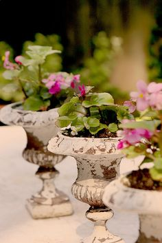 urns as center pieces in the Garden