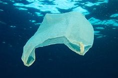There's more to plastic pollution of the oceans than meets the eye, say researchers
