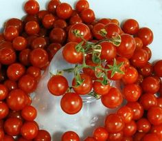 red currant tomato 30 seeds heirloom tart sweet red currant tomato 30 ...