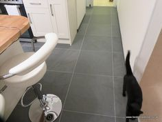 A black cat in a cream and oak kitchen with Brazilian Grey Green Slate Floor tiles - 600x600x10mm - fab !