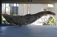 Humpback whale sculpture made from driftwood from Hurricane Odile at The Cape, a Thompson Hotel