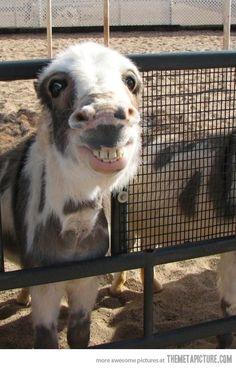 Million dollar smile…