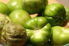 HCG Diet Recipes - Phase 2 Recipe - Green Chile Salsa | HCG Diet Recipes Made Simple