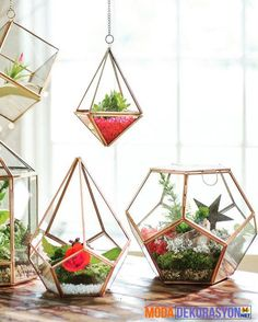 """Prism Terrarium We are want to say thanks if you like to share this post. - """"DIY & Crafts Lovers"""" -Hanging Prism Terrarium We are want to say thanks if you like to share this post."""