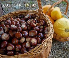 """SÃO MARTINHO O dia de São Martinho é festejado um pouco por toda a Europa, mas as celebrações variam de país para país. Em Portugal é tradição fazer-se um grande magusto, beber-se água-pé e jeropiga. Esta é também uma altura em que se prova o novo vinho, produzido com a colheita do ano anterior. Como diz o ditado popular, """"no dia de São Martinho, vai à adega e prova o vinho"""".  Feliz dia de São Martinho.  #sãomartinho #castanhas"""
