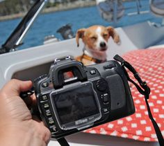 Can't see your LCD screen in the sun? Brilliant camera hack that only costs $1!!! Did someone say Stocking Stuffers?