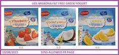 lidl yogurt syns