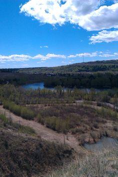 Bow River, Calgary Calgary, Bow, River, Mountains, Nature, Arch, Naturaleza, Ribbon Work, Hair Bow