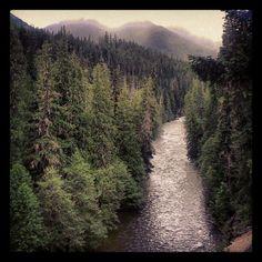 River above Lake Wenatchee, Washington State.