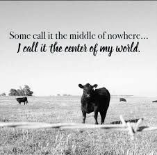 Love of the country farm life~ Cow Quotes, Farm Quotes, Country Girl Quotes, Horse Quotes, Country Girls, Country Living Quotes, Girl Sayings, Smile Quotes, Country Music