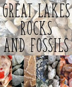 Great Lakes Locals Pinterest Rocks and Fossils
