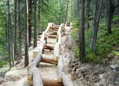 Mountain biking at Trestle Bike Park in Winter Park, Colorado. Master planning and construction supervision by Gravity Logic