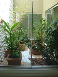 jardim pequeno implantado em um ambiente projetado com abertura para receber iluminação externa