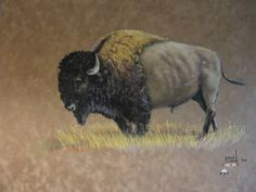 buffalo paintings - Google Search