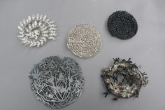 Marian Hosking, 5 Brooches (2012)  hakea, wahlenbergia, acacia, banksia and stylidium, 925 silver