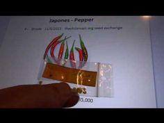 Japones - Pepper