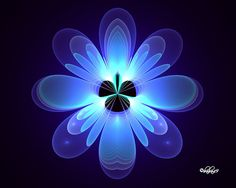 Blue Flower For Erica by baba49 on DeviantArt