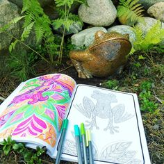"""Mental Images Coloring Books (@paivivesala_art) on Instagram: """"The frog found a friend! 🐸🐸 Notice the beautiful reverse page also. * Coloring book: Mental Images…"""" Adulting, Coloring Books, Image, Beautiful, Instagram, Art, Vintage Coloring Books, Art Background, Kunst"""