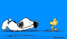 Snoopy Wallpaper, Animal Wallpaper, Snoopy Und Woodstock, Snoopy Images, Mickey Mouse, Snoopy Quotes, Bd Comics, Charlie Brown And Snoopy, Cartoon Pics