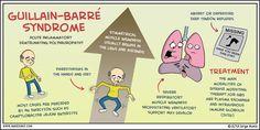 The disorder called Guillain-Barre syndrome attacks the p. Nursing Tips, Nursing Notes, Nursing Programs, Med Surg Nursing, Nursing Exam, Nursing Assessment, Cardio, Guillain Barre Syndrome, Critical Care Nursing