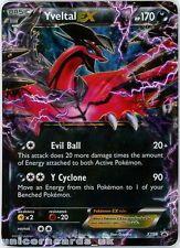 Yveltal EX XY08 Holofoil Pokemon Tin Promo Card