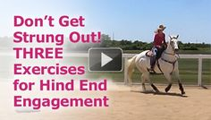 3 Exercises For Hind End Engagement.  Achieve collection around the barrels for fast, powerful turns!
