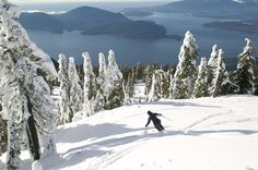 Cypress mountain, Vancouver, British Columbia, Canada photo