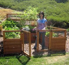 Raised garden idea, fenced in. (to keep Chickies out)